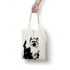 Nett - Yorkshire Terrier voksen